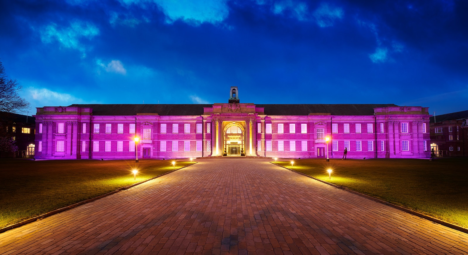 CASTLE study – Edge Hill University turns purple in honour of Purple Day 2019
